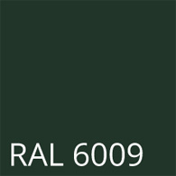 RAL 6009
